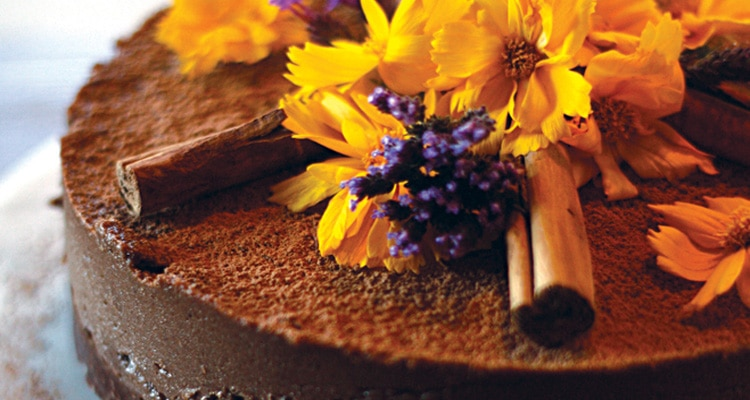 Raw Cinnamon and Chocolate Cake