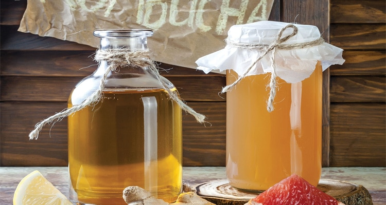 Essential Guide to Pickling & Fermenting